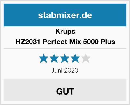 Krups HZ2031 Perfect Mix 5000 Plus Test