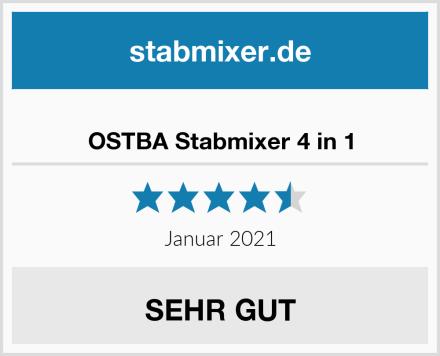 OSTBA Stabmixer 4 in 1 Test